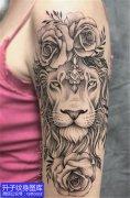 美女大臂外侧狮子与玫瑰花纹身图案