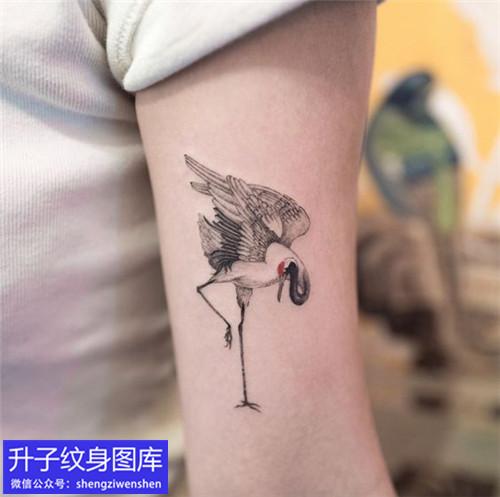 推荐5款经典的大臂外侧仙鹤纹身图案大全