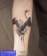 重庆纹身推荐7款手臂仙鹤纹身图案大全