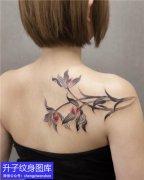肩膀纹身 美女肩膀兰花纹身图案