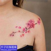 美女锁骨彩色桃花纹身图案