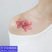 精致的锁骨纹身 彩色小红花纹身图案