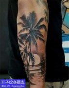 手臂外侧欧美椰树纹身