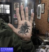 手掌苍蝇纹身图案
