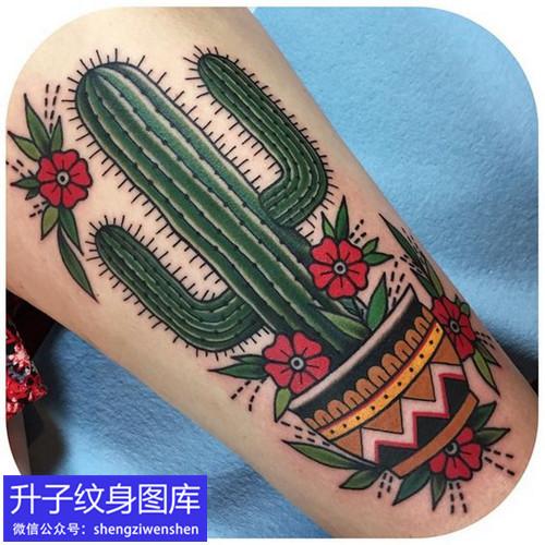 小腿彩色old school 量天尺仙人掌纹身图案