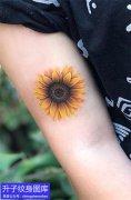 大臂内侧精致彩色向日葵纹身图案