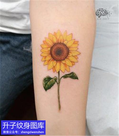 手臂内侧小清新彩色太阳花纹身
