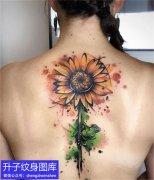 后背彩色水彩向日葵纹身图案