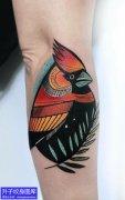 手臂别致彩色动物鸟纹身图案