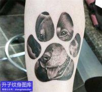 手臂内侧动物脚印纹身图案