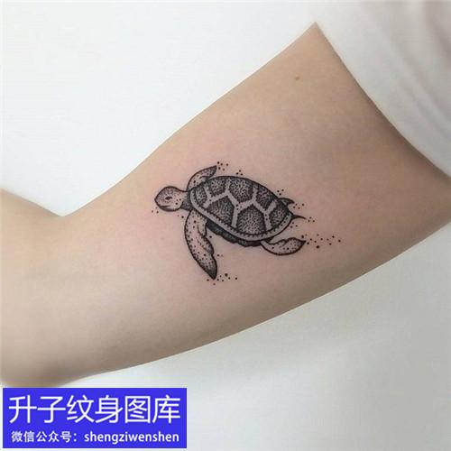 大臂内侧乌龟纹身图案