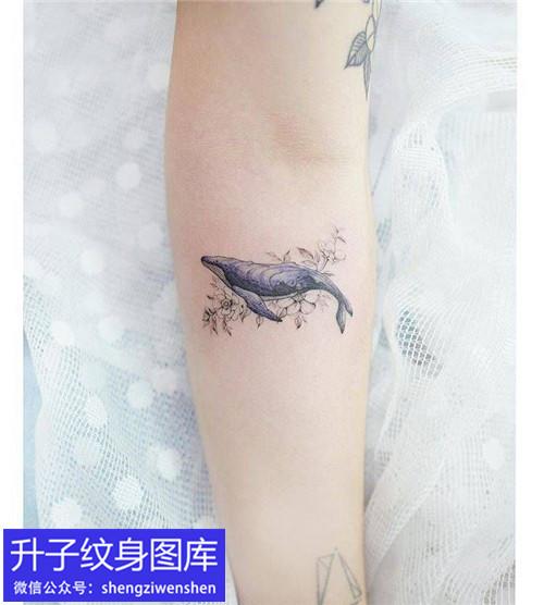 沙坪坝手臂内侧鲸鱼纹身图案