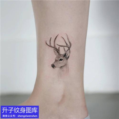 脚踝鹿头纹身图案