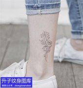 脚踝植物线条花纹身图案