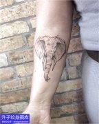 观音桥纹身排名的大象纹身