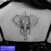 美女后背大象纹身暗黑系列