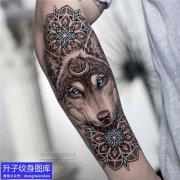 重庆刺青 手臂动物狼头纹身图案