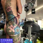 女性臀部鲤鱼荷花纹身图案图片