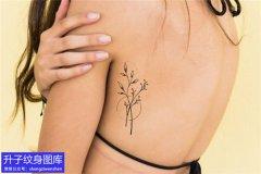 美女侧腰小清新植物花草纹身图案