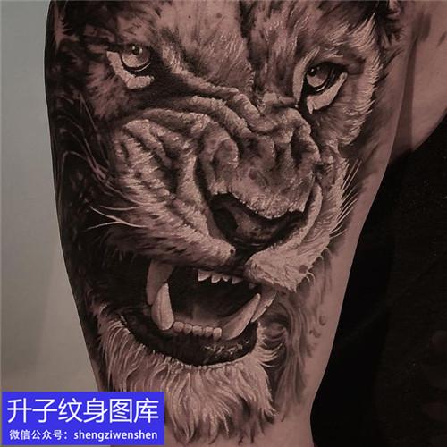 大臂外侧写实狮子纹身图案